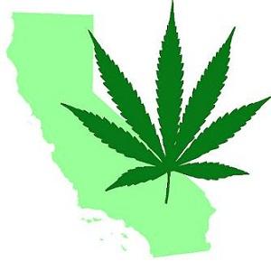 California Marijuana Leaf