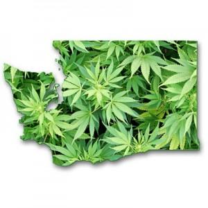 washington medical marijuana