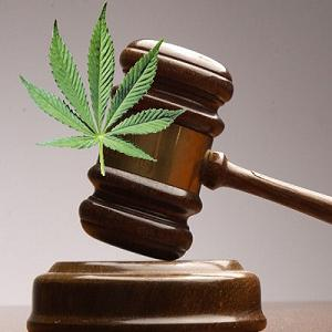court support medical marijuana ronnie chang