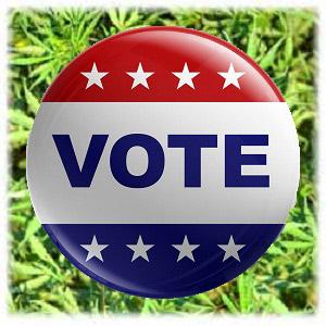 vote for marijuana