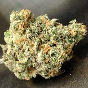 blue dream marijuana strain