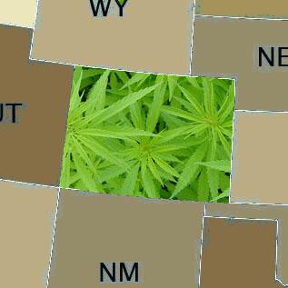 colorado cannabis amendment 64