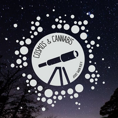 cosmos and cannabis dfw norml