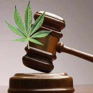 long beach eartheart dispensary restraining order