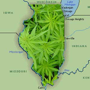 Illinois medical marijuana hb 1