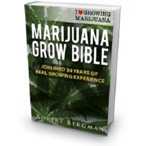 marijuana grow bible book