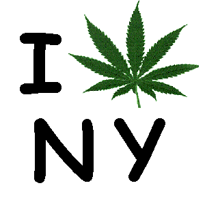 new york marijuana decriminalization assembly